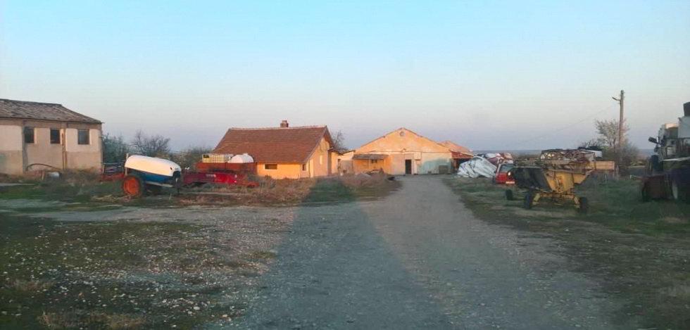 Продается ферма по разведению коров